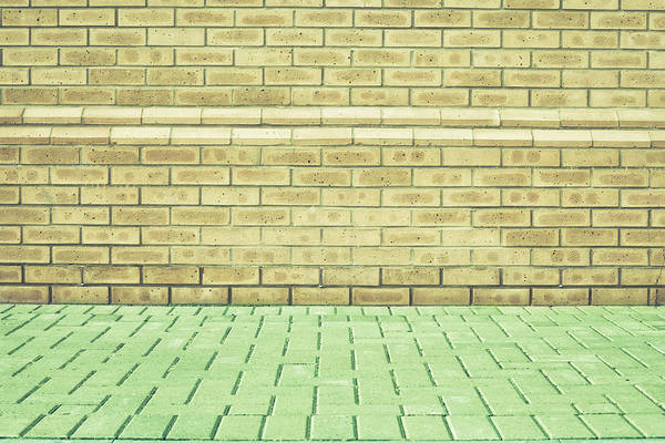 Abstracts Print featuring the photograph Brick Wall by Tom Gowanlock