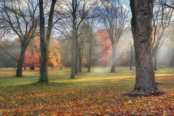 Sun Rays Print featuring the photograph A November Morning by Bill Wakeley
