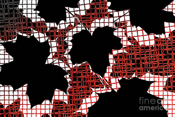 Abstract Print featuring the photograph Abstract Leaf Pattern - Black White Red by Natalie Kinnear