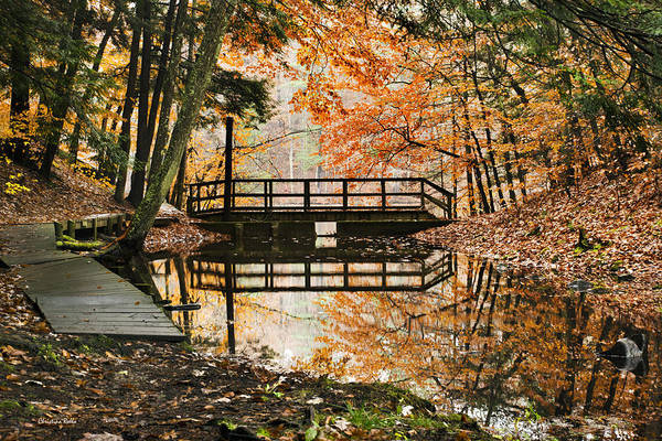 Fall Print featuring the photograph Autumn Pleasure by Christina Rollo