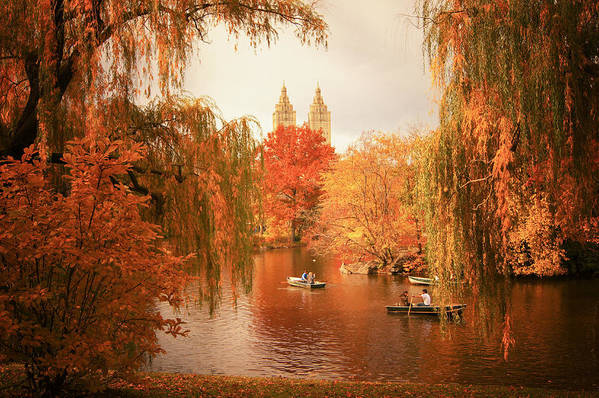 Autumn Print featuring the photograph Autumn Trees - Central Park - New York City by Vivienne Gucwa