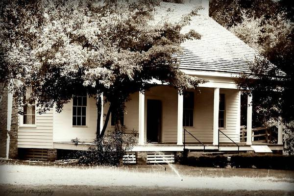 Bellevue Print featuring the photograph Bellavue Plantation by Debra Forand