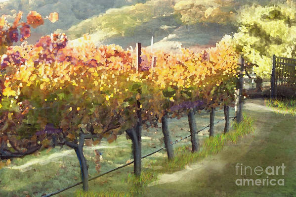 Corde Valle San Martin Ca Print featuring the painting California Vineyard Series Morning In The Vineyard by Artist and Photographer Laura Wrede
