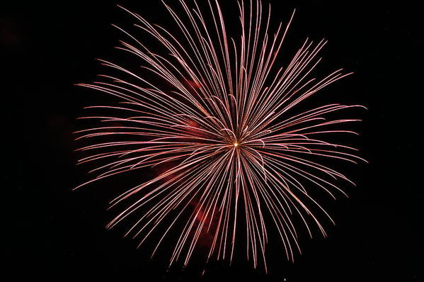 Fireworks Print featuring the photograph Celebration Xxii by Pablo Rosales