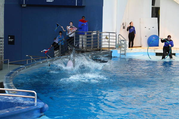 Inner Print featuring the photograph Dolphin Show - National Aquarium In Baltimore Md - 121292 by DC Photographer