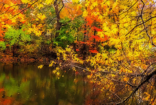 Nature Print featuring the photograph Fall Reflection by Robert Mitchell