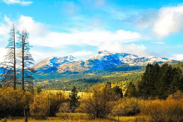 Autumn Print featuring the photograph Fall Season In The Sierras by Don Bendickson