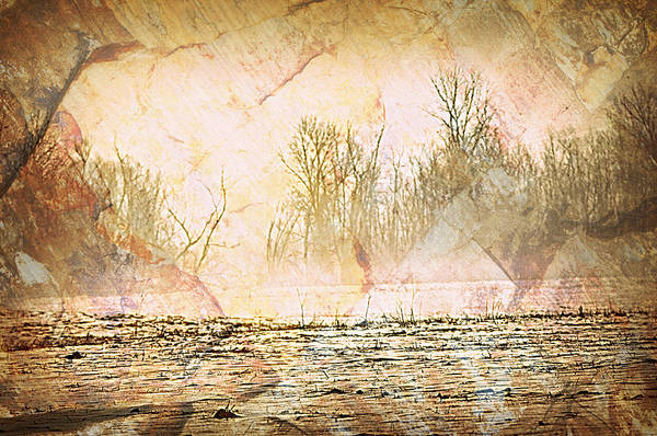 Landscape Print featuring the photograph Fog Abstract 4 by Marty Koch