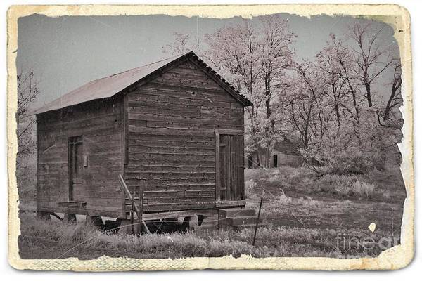 Frosty Morning Sepia 2 Print featuring the mixed media Frosty Morning Sepia 2 by Chalet Roome-Rigdon