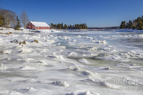 Maine Print featuring the photograph Frozen by Evelina Kremsdorf