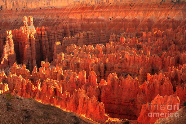 Rock Formations Print featuring the photograph Hoodoos Basin by Robert Bales