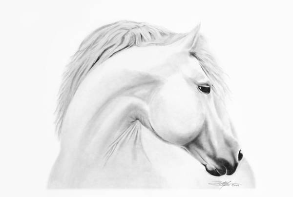 Horse Print featuring the drawing Horse by Don Medina