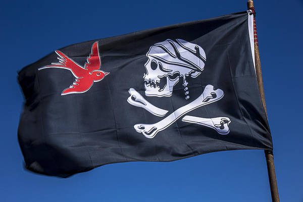 Jack Sparrow Print featuring the photograph Jack Sparrow Pirate Skull Flag by Garry Gay