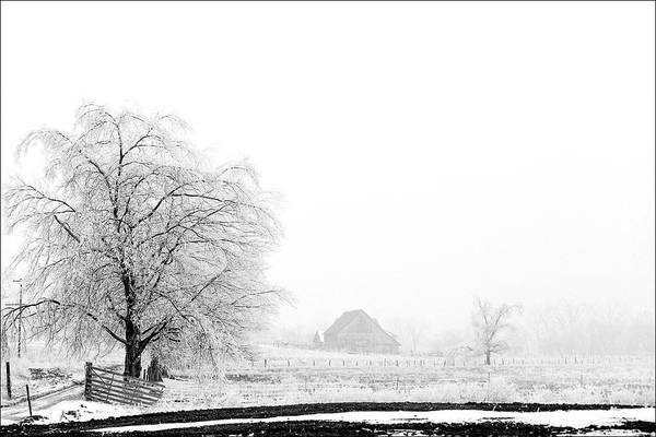 Kentucky Print featuring the photograph Kentucky Winter by Wendell Thompson