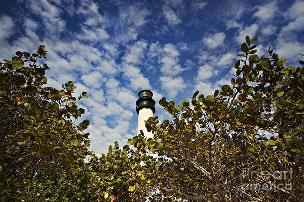Print featuring the photograph Lighthouse At Bill Baggs Florida State Park by Eyzen Medina
