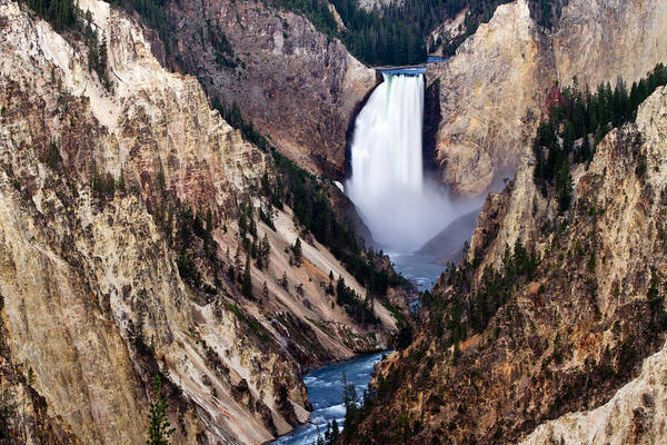 Print featuring the photograph Lower Yellowstone Falls by Bill Gallagher