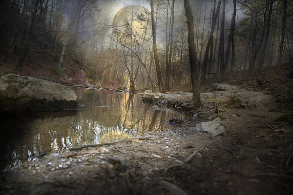 Full Print featuring the photograph Moon Camp by Betsy Knapp