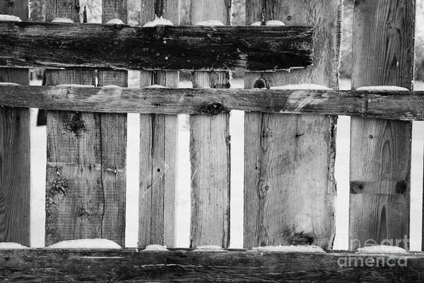 Old Print featuring the photograph old patched up wooden fence using old bits of wood in snow Forget by Joe Fox