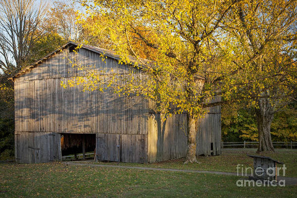 America Print featuring the photograph Old Tobacco Barn by Brian Jannsen
