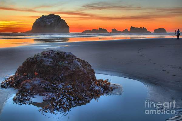 Bandon Beach Print featuring the photograph Preparing To Shoot by Adam Jewell