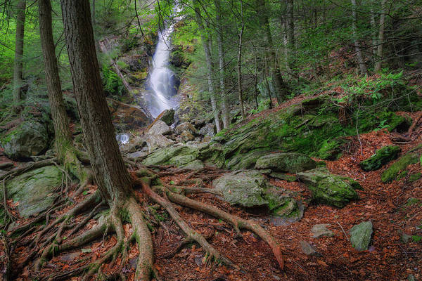Race Brook Falls Print featuring the photograph Rough Terrain by Bill Wakeley