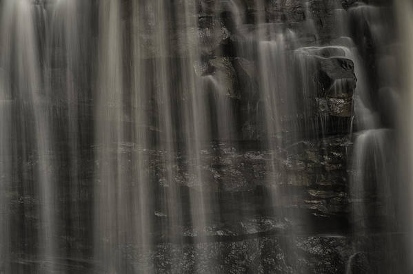 Allegheny Mountains Print featuring the photograph Shower Curtain Drapes Bear Roar by Mark Serfass