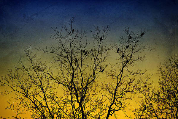 Bird Print featuring the digital art Silhouette Birds Sequel by Christina Rollo
