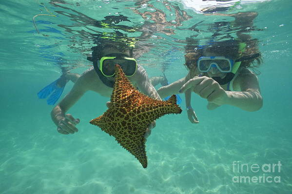 People Print featuring the photograph Snorkellers Holding A Four Legs Starfish by Sami Sarkis