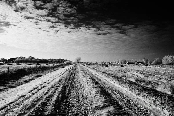 Small Print featuring the photograph snow covered untreated rural small road in Forget Saskatchewan Canada by Joe Fox