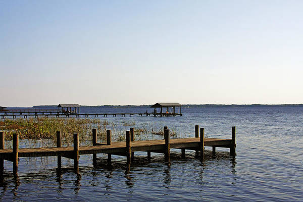 St Print featuring the photograph St Johns River Florida - Walk This Way by Christine Till