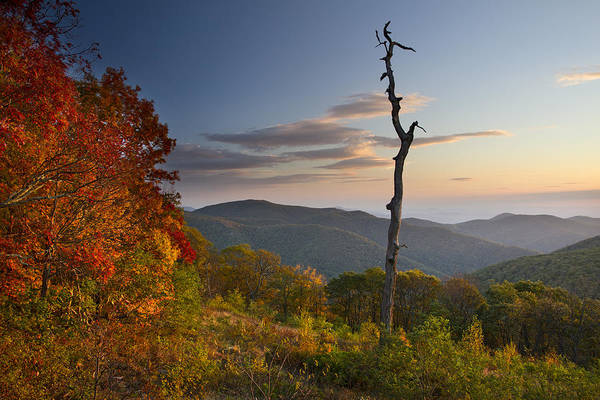 Shenandoah Print featuring the photograph Sunrise In Shenandoah National Park by Pierre Leclerc Photography