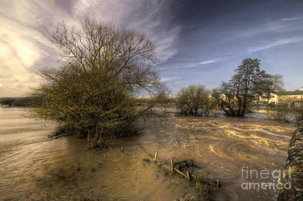 Stoke Canon Print featuring the photograph The Floods At Stoke Canon by Rob Hawkins