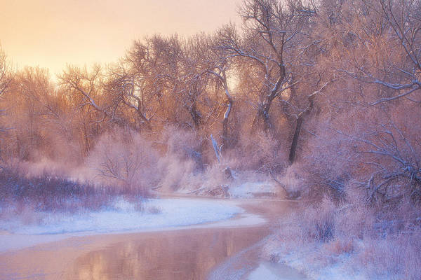 Ice Print featuring the photograph The Warmth Of Winter by Darren White
