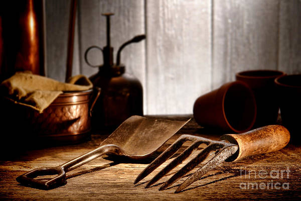 Gardening Print featuring the photograph Vintage Gardening Tools by Olivier Le Queinec