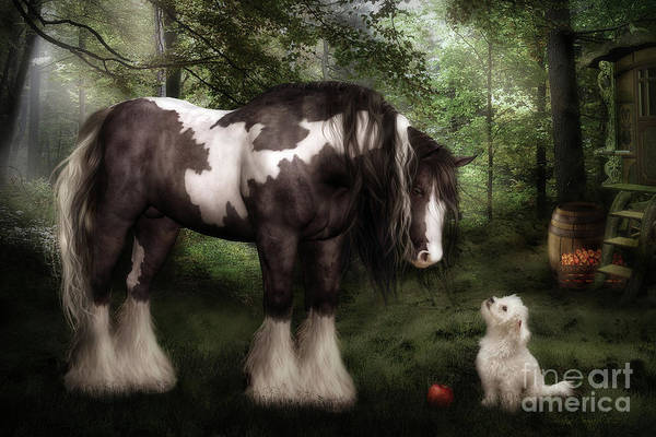Gypsy Vanner Horse Print featuring the digital art Want To Play by Shanina Conway
