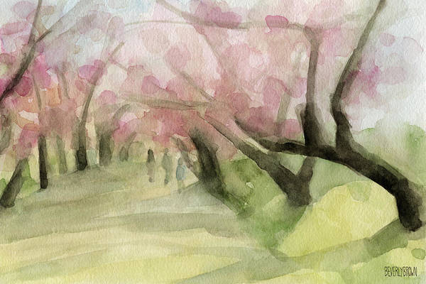Cherry Blossoms Print featuring the painting Watercolor Painting Of Cherry Blossom Trees In Central Park Nyc by Beverly Brown