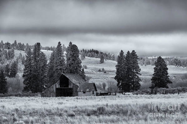 Barn Print featuring the photograph Weathered Beneath The Storm by Mike Dawson