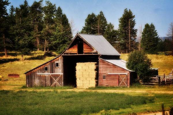 Barn Print featuring the photograph Whitefish Barn by Marty Koch