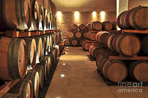Barrels Print featuring the photograph Wine Barrels by Elena Elisseeva
