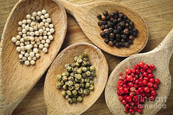 Peppercorns Print featuring the photograph Assorted Peppercorns by Elena Elisseeva