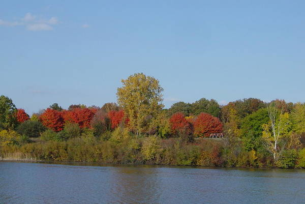 Brilliant Autumn Colors Print featuring the photograph October In Michigan by Margrit Schlatter
