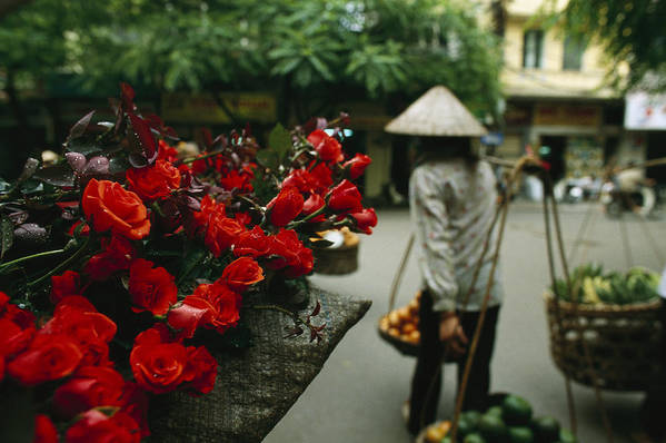 Asia Print featuring the photograph A Fruit Vendor In A Conical Hat Passes by Justin Guariglia