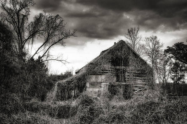 Barn Print featuring the photograph Abandoned Barn by Brenda Bryant