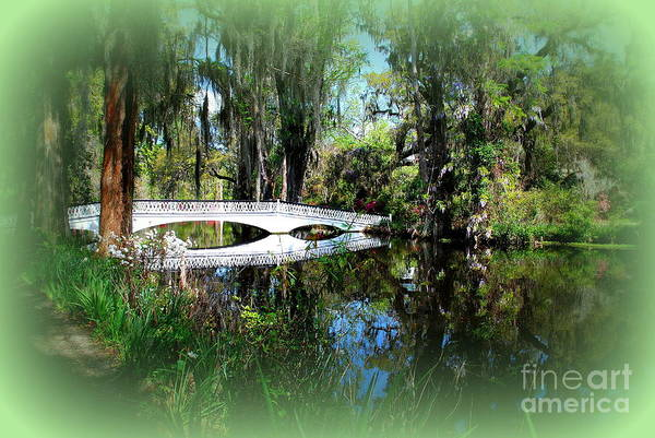 White Bridge Print featuring the photograph Another White Bridge In Magnolia Gardens Charleston Sc II by Susanne Van Hulst