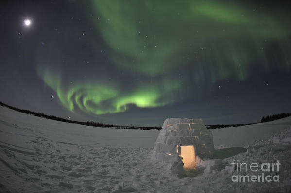 Yellowknife Print featuring the photograph Aurora Borealis Over An Igloo On Walsh by Jiri Hermann