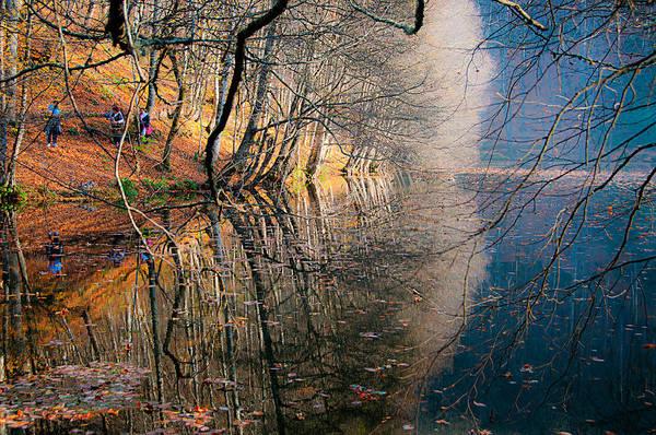 Autumn Print featuring the photograph Autumn by Okan YILMAZ