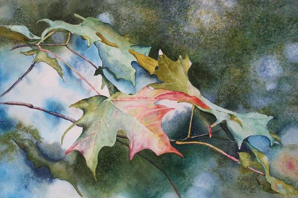 Close Focus Nature Scene Print featuring the painting Autumn Sparkle by Patsy Sharpe