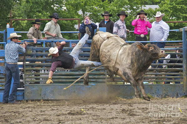 Photography Print featuring the photograph Bull 1 - Rider 0 by Sean Griffin