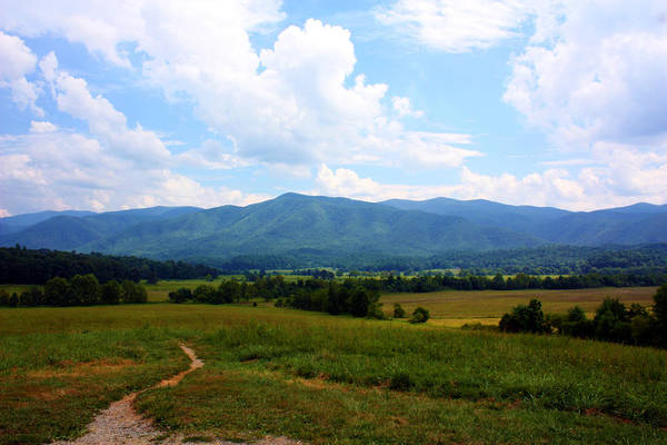 Cades Cove Print featuring the photograph Cades Cove by Susie Weaver