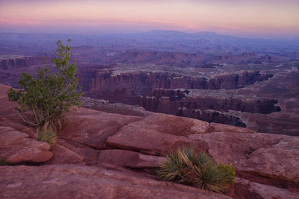 Island In The Sky Print featuring the photograph Canyonlands At Dusk by Andrew Soundarajan